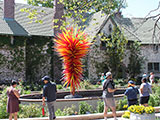 Chihuly glass sculpture entitled