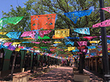 The colorful Mexican Market Square (Mercado)